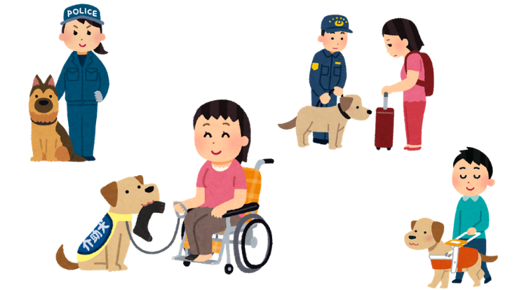 犬と共存する人間社会 | 氣愛塾