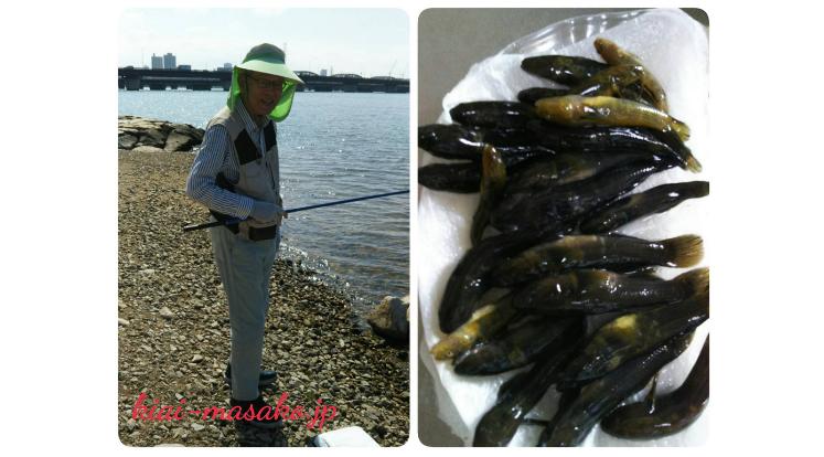 淀川河口でのハゼ釣り情報 | 氣愛塾